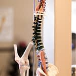 Columbia Gorge Physical Therapy teaches a comprehensive home program to maintain a healthy back